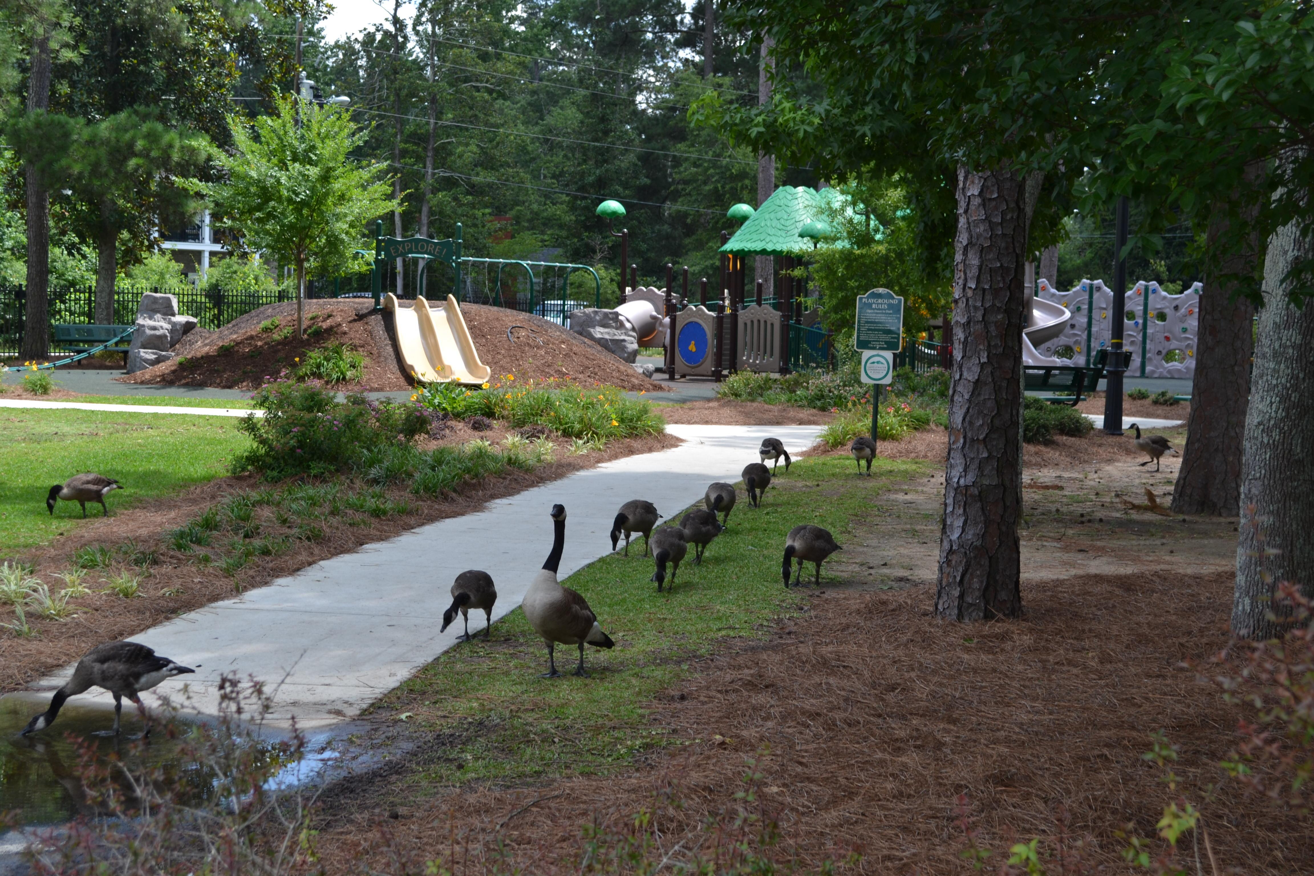 Lawton-playground