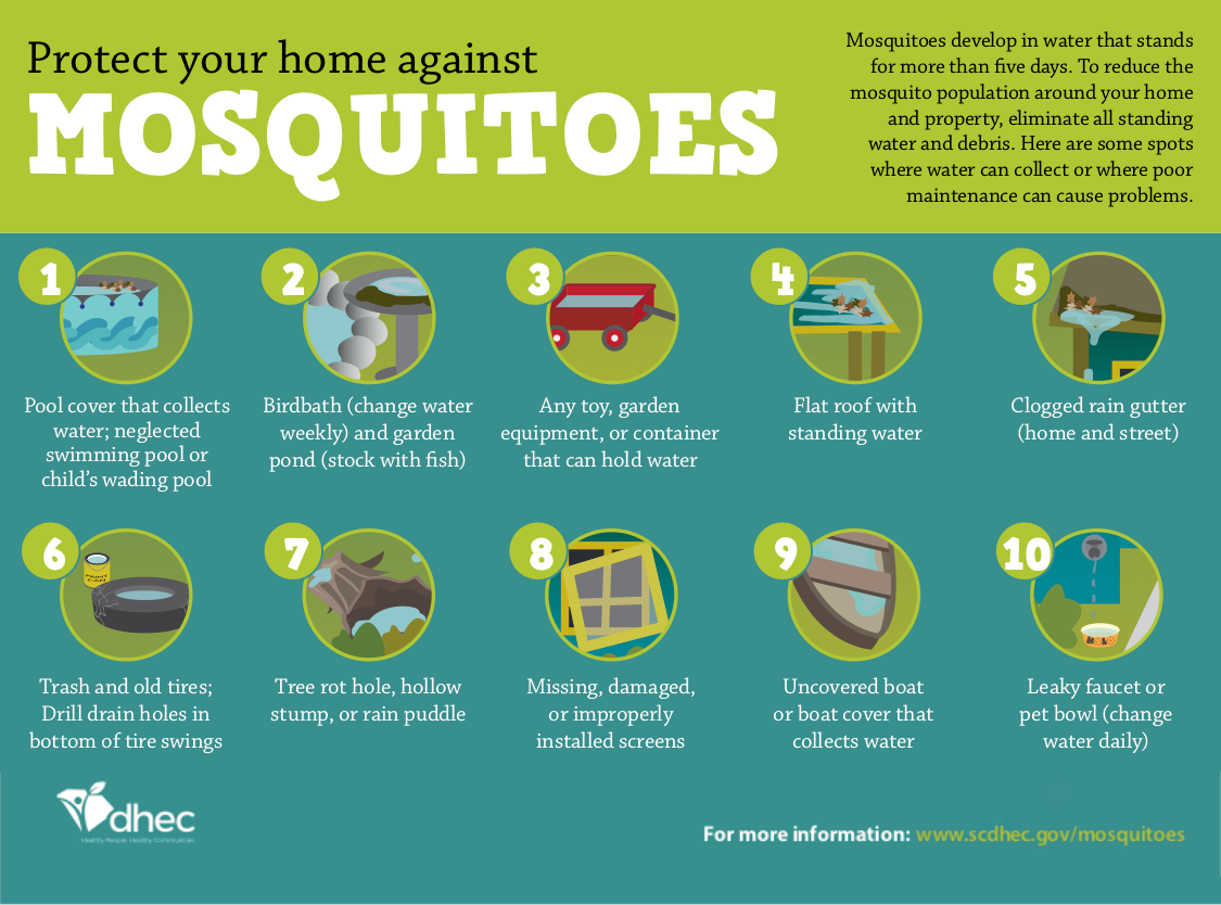 Ways to protect your home again mosquitos.