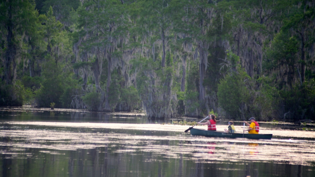 Members of Hartsville Young Professionals canoeing on Black Creek.